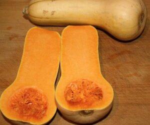 Macaroni and… Squash?