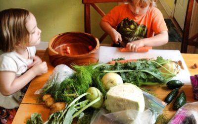 Minnesota + Our Bountiful Harvest = Minnesota Salad