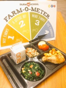 Our educators featured tastings of the Green Lava Apple Kale Salad pictured in this all-local lunch served Oct. 22 for Food Day