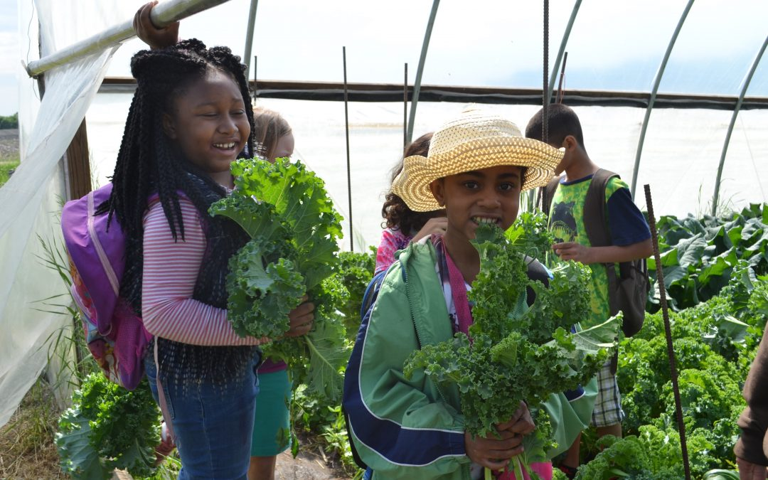 Climate Conscious Cuisine: What Our Kids Know